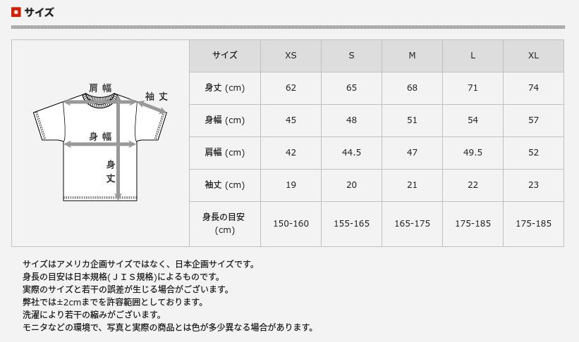 Hanes(ヘインズ)_Tシャツ_購入レビュー_08