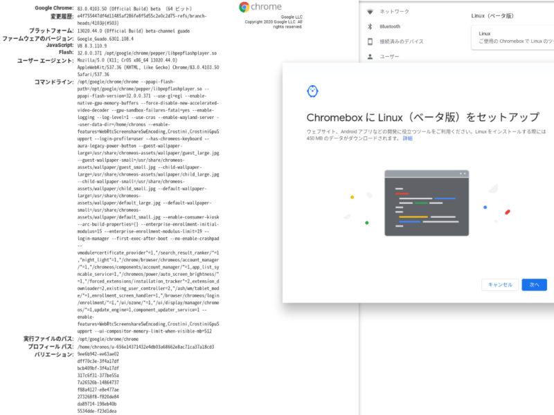 asus chromebox cn62 linux supported 800x600-ASUSの「Chromebox 2 CN62」がbetaチャンネルでついにLinuxをサポート