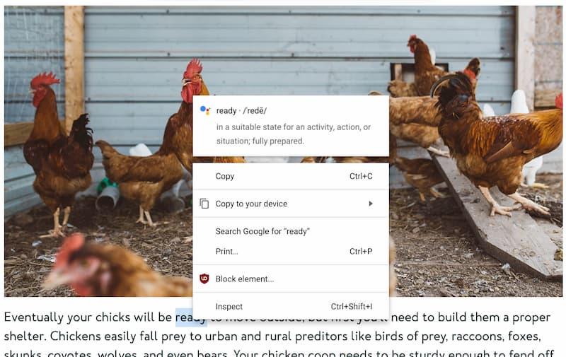 quick answers image-Chrome OS Devが84.0.4136.1にアップデート。Quick Answer機能が追加